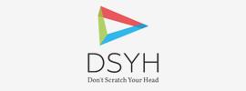 dsyh-1